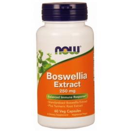 Boswellia Extract + Turmeric 250mg 60 kaps.