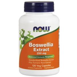 Boswellia Extract + Turmeric 250mg 120 kaps.